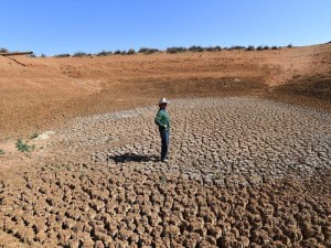 Throughout 2018 farmers in NSW and QLD struggled through a severe drought