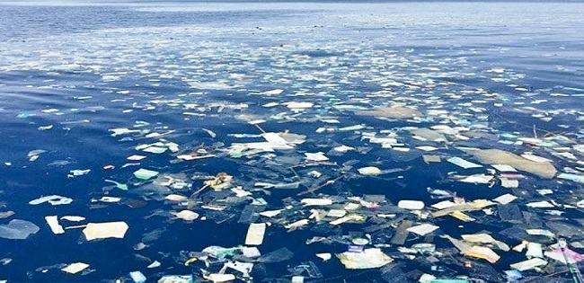 What the Heck Is the Great Pacific Garbage Patch ...