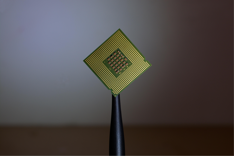 human micro-chipping